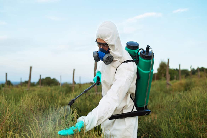 Обработка инсектицидами на поле